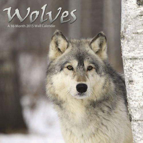 Calendars for Wildlife Lovers