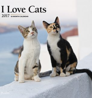 2017 Calendars for Cat Lovers