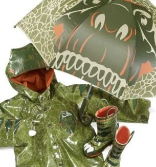 Toddlers Dinosaur Raincoats Boots and Umbrellas