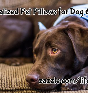 Personalized Pet Pillows for Dog Owners
