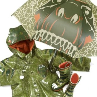 Dinosaur Raincoat and Umbrella Set