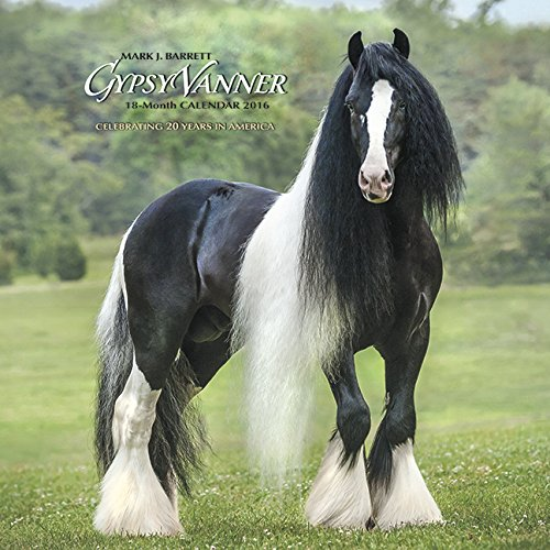 Calendars for Horse Lovers